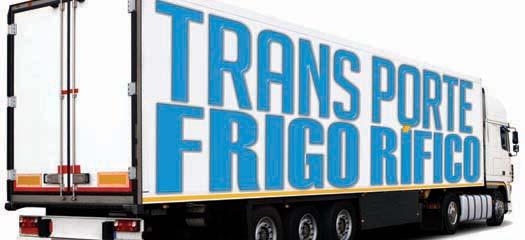 Especial Transporte Frigorífico de 24 páginas